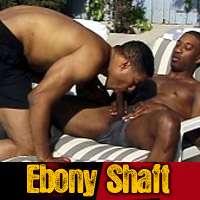 'Visit 'Ebony Shaft''