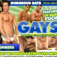 'Visit 'Gay Sex Brazil''