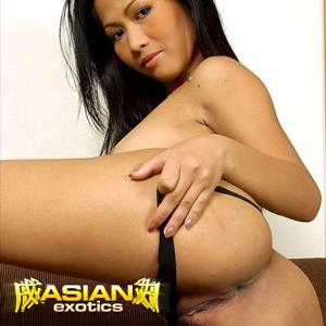 'Visit 'Asian Exotics''