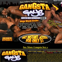 'Visit 'Gangsta Gays''