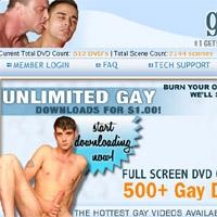 'Visit 'Gay Layz''