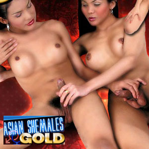 Join Asian Shemales Gold