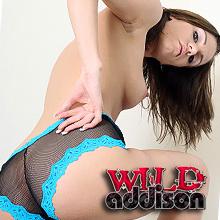 'Visit 'Wild Addison''