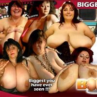 'Visit 'Boobs XL''