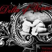 'Visit 'Delta Of Venus''