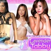 'Visit 'Lavender Tabby''