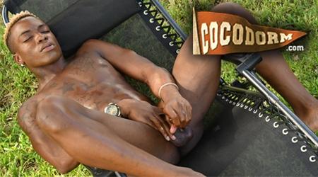 'Visit 'Coco Dorm''