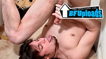 'Visit 'BF Uploads''