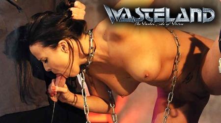 'Visit 'Wasteland''
