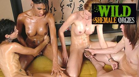 Beste shemale orgie