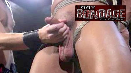 'Visit 'Gay Bondage Pay Per View''