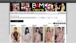 Preview #4 for 'BAM Visions'