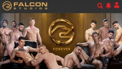Preview #1 for 'Falcon Studios'