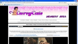 Preview #4 for 'Curvy Cats'