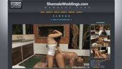 Preview #3 for 'Shemale Weddings'
