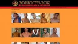Preview #2 for 'Coco Boyz'