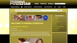 Preview #1 for 'Shemale Pornstar'