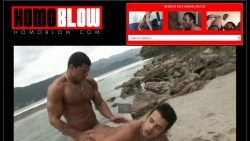 Preview #4 for 'Homo Blow'
