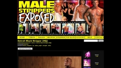 Preview #3 for 'Male Strippers Exposed'