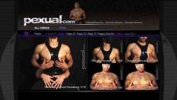 Preview #2 for 'Pexual'