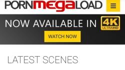 Preview #1 for 'Porn Mega Load'