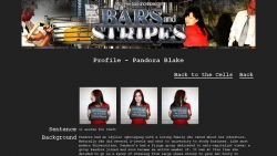 Preview #3 for 'Bars and Stripes'
