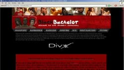 Preview #1 for 'Black Bachelor'