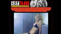 Preview #3 for 'Celeb Taboo'