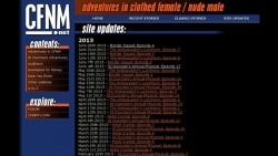 Preview #3 for 'CFNM.net'
