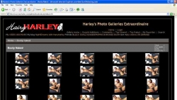 Preview #2 for 'Hairy Harley'