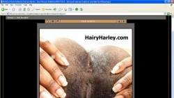 Preview #4 for 'Hairy Harley'