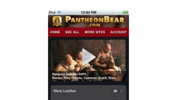 Preview #2 for 'Pantheon Bear Mobile'