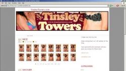 Preview #1 for 'Tinsley Towers'