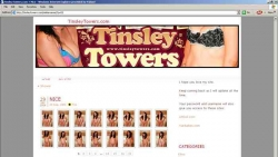 Preview #2 for 'Tinsley Towers'