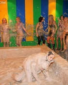 ladies in a mud wrestling match